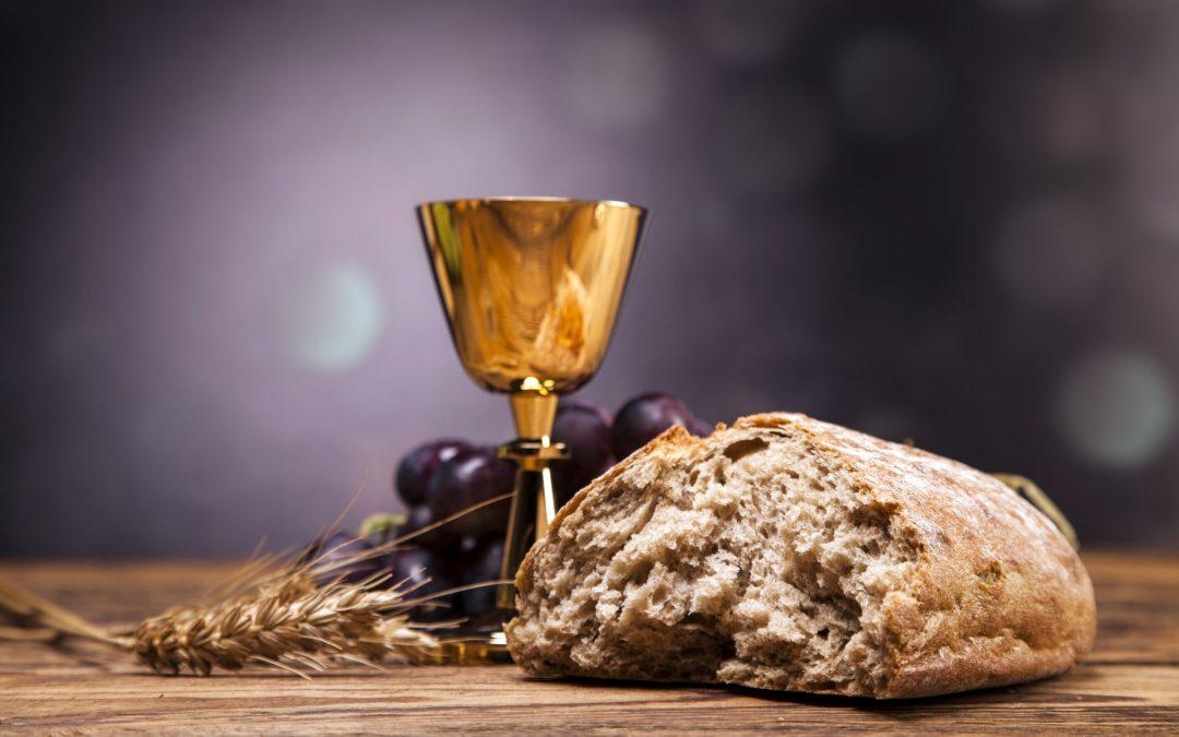 ¡Jesús es pan vivo! / Domingo 1 de Agosto de 2021