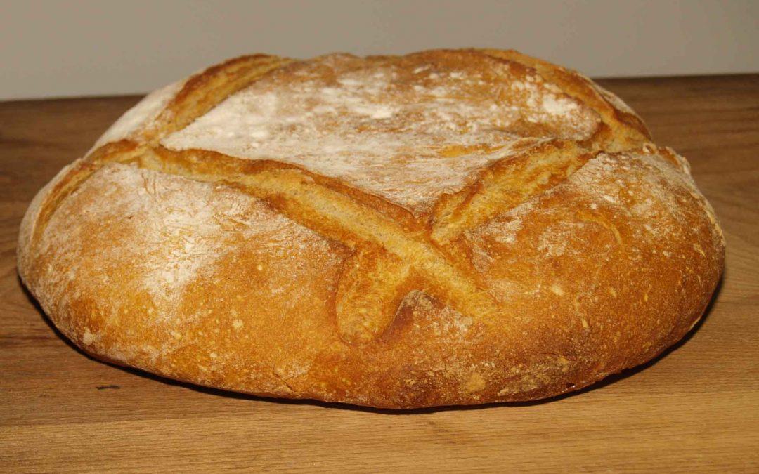 ¡Jesús  es el pan que da la vida! / Domingo 8 de Agosto de 2021